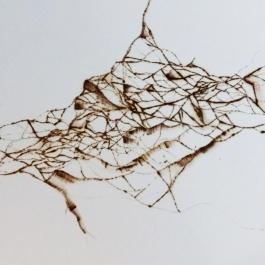 A test pyrography piece